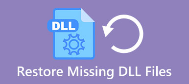 Missing Dill Files