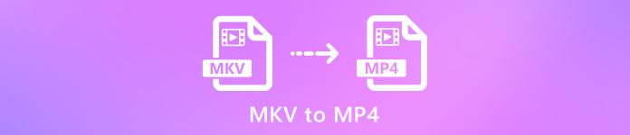 MKV zu MP4