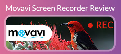 Movavi Screen Recorder Bewertung