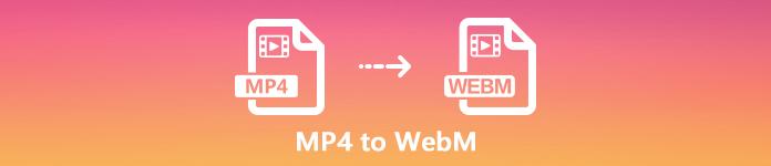 MP4 zu WebM