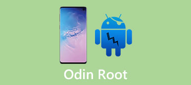 Odin Root