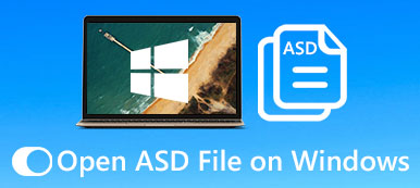 Open Asd File