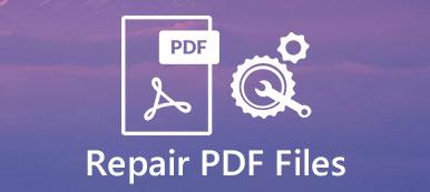 PDF-Wiederherstellung