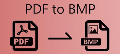 PDF zu BMP
