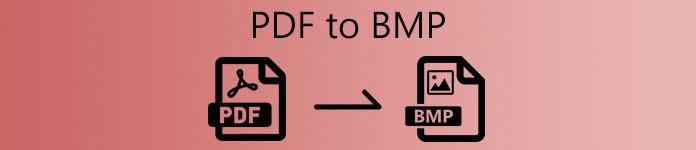 PDFからBMPへ
