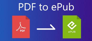 PDF zu EPUB