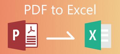 PDF nach Excel