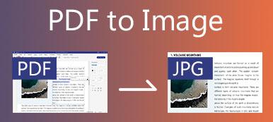 PDF zum Bild