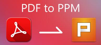 PDFからPPM