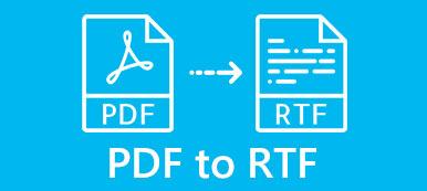 PDF zu RTF
