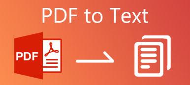 PDF zu Text