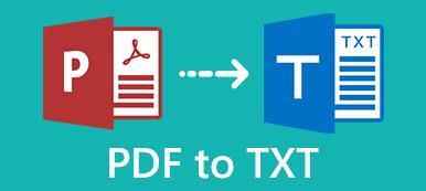 PDF zu TXT