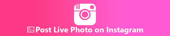 Poste ein Live-Foto auf Instagram