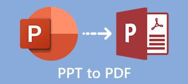 PPT zu PDF