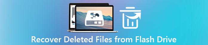 Gelöschte Dateien von Flash Drive wiederherstellen