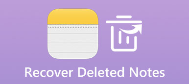 Recover Deleted Notes
