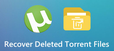 Recover Deleted Torrent Files