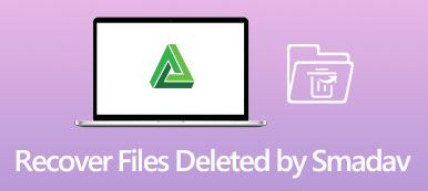 Recover Files Deleted by Smadav