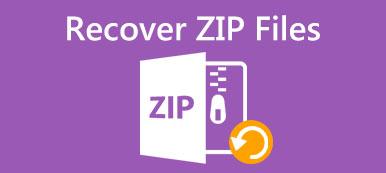 Wiederherstellung von ZIP-Dateien