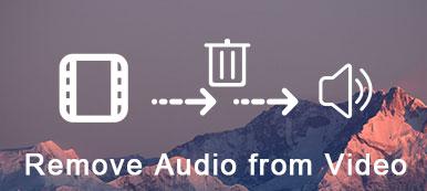 Audio aus Video entfernen
