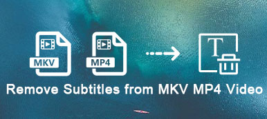 Remove Hardcoded Subtitles from MKV MP4 Videos