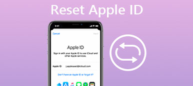 Reset Apple ID or Password