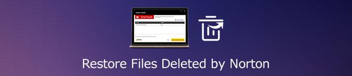 Von Norton gelöschte Dateien wiederherstellen