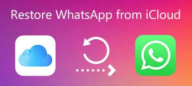Stellen Sie WhatsApp aus iCloud wieder her