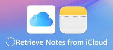 Notizen von iCloud abrufen
