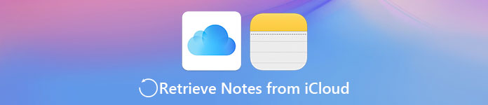 Retrieve Notes from iCloud