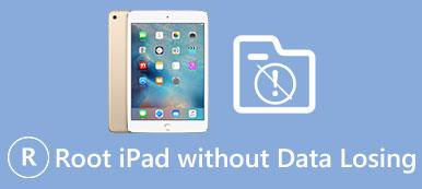Wurzel iPad