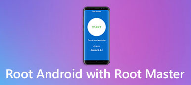 Root-Meister