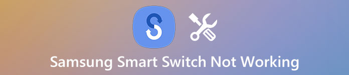 Fix Smart Switch funktioniert nicht