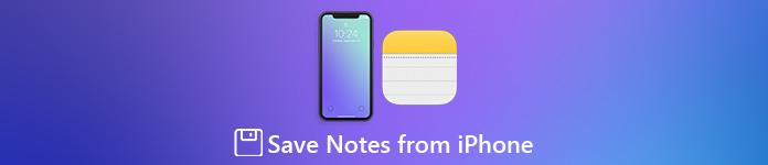 Notizen vom iPhone speichern