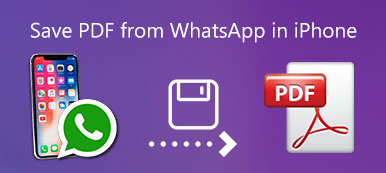 Save PDF from WhatsApp on iPhone