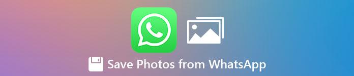 Enregistrer des photos depuis WhatsApp