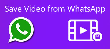 Save Video from WhatsApp