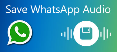 Save WhatsApp Audio