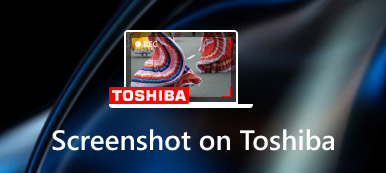 Screenshot Toshiba