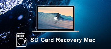 SD Card Recovery Tool
