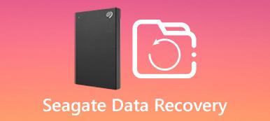Seagate-Datenwiederherstellung