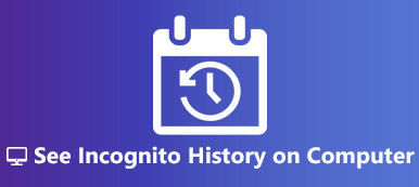 See Incognito History on Google Chrome