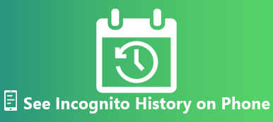 See Incognito History on iPhone