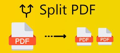 PDF teilen
