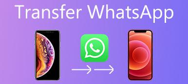 Transférer Whatsapp vers un nouveau téléphone