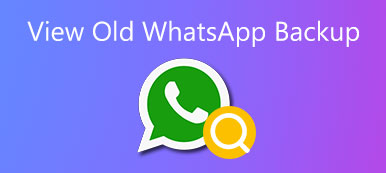 View Old WhatsApp Backup