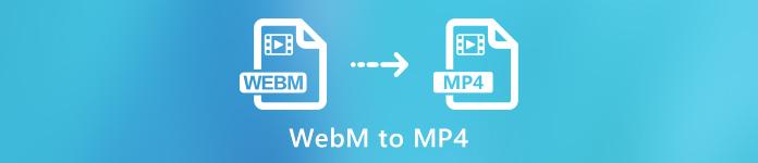 WebM à MP4
