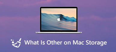 What is other on Mac Storage