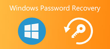 Windows-Password Recovery