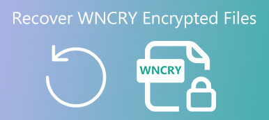 Wncry Recovery
